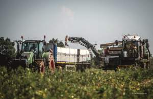 L'acquisto di macchine dotate di innovativi sistemi di controllo del peso ha permesso di mappare la produzione di pomodoro da industria.