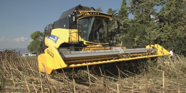 New Holland Cr 7.90 Everest
